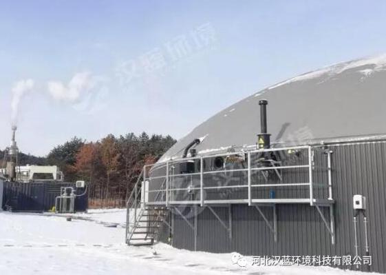 万纯沼气发电机组脱硝设备